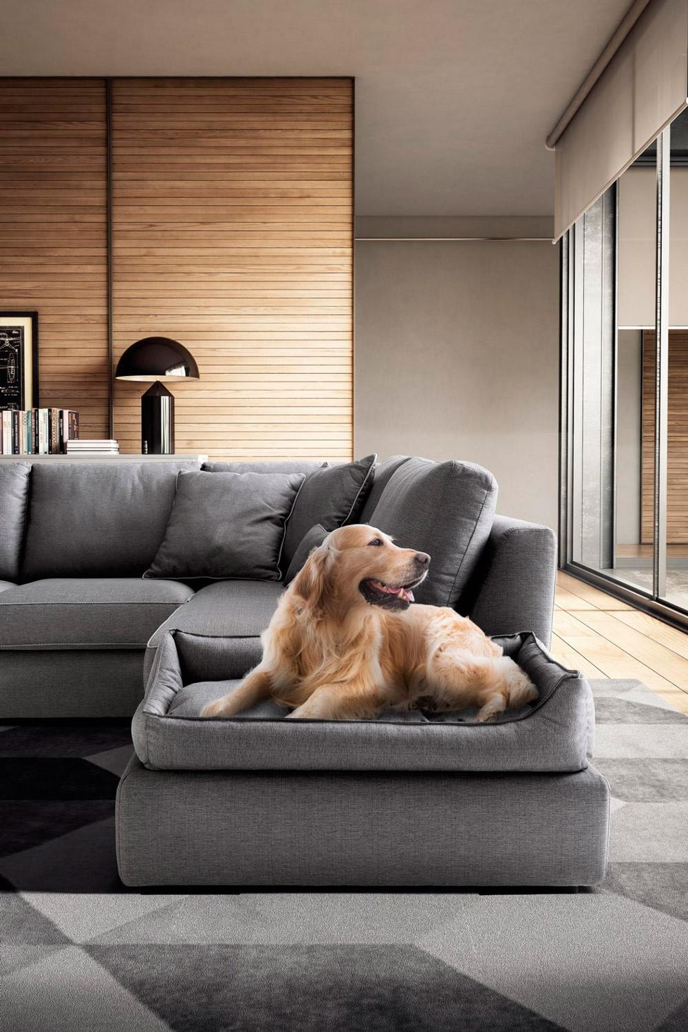 Tessuti divano per animali Ginestri Arredamenti